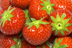 Strawberries. Ripe strawberries as a background Royalty Free Stock Images