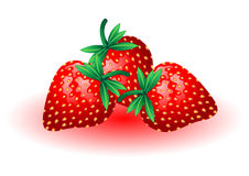 Strawberries. Fresh and tasty strawberries isolated over white background Royalty Free Stock Photo