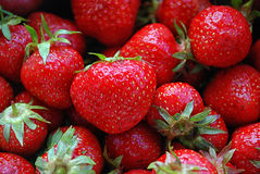 Free Strawberries Royalty Free Stock Photography - 34368617