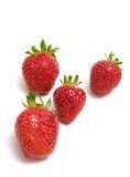 Strawberries. Four strawberries on white background Royalty Free Stock Photos