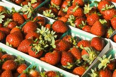 Strawberries. Fresh strawberries on display at a farmer's market in Minneapolis Royalty Free Stock Images