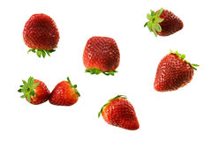 Strawberries. Isolated on white background Royalty Free Stock Photos