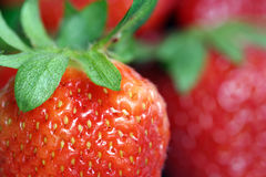 Strawberries. Strawberries close up Royalty Free Stock Photo