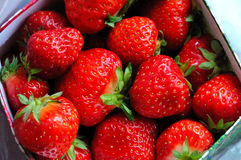 Strawberries. In a box ready to be eaten Royalty Free Stock Photography