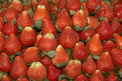 Strawberries. Ripening Strawberries displayed in a market royalty free stock photos