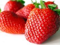 Strawberries. Ripe strawberries stock photo