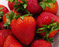 Strawberries. Red, ripe strawberries stock photography