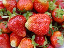 Strawberries. Sweet friuts Stock Image