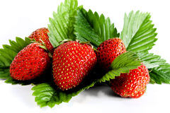Strawberries. Some strawberries isolated from white stock photos