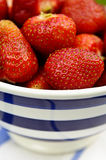 Strawberries in abowl Stock Photos