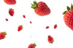 Strawberries in the air. Fresas rojas en el aire Royalty Free Stock Images