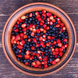 Strawberries And Blueberries, Wild Berry Stock Images