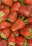 Strawberries background stock photography