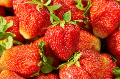 Strawberries  background closeup Stock Images