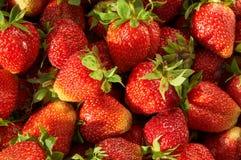 Strawberries  background closeup Royalty Free Stock Photo