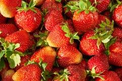 Strawberries  background closeup Royalty Free Stock Photos