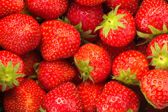 Strawberries. Background completely filled with strawberries Royalty Free Stock Images