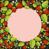 Strawberries background with leaves, berries and flowers in round frame on black. Strawberries background with leaves, berries and flowers with round frame on Stock Image