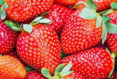 Strawberries background. Stock Image