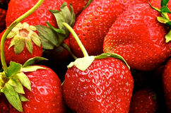 Strawberries Background Royalty Free Stock Photography