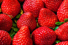 Strawberries background pile macro Royalty Free Stock Image