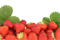 Strawberries banner Stock Images