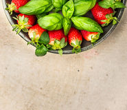 Strawberries with basil leaves in gray dish on beige table,  top view, close up Stock Image