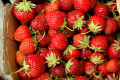 Strawberries in a basket Stock Image