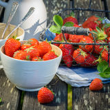 Strawberries in the basket and bowls with milk jug on wooden tab Royalty Free Stock Images
