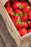 Strawberries. Royalty Free Stock Photos