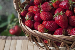 Strawberries in a basket. On a napkin in the garden Stock Photography