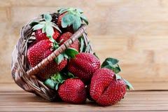 Strawberries Stock Photos