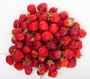 Strawberries. Berries of a ripe strawberry on white Royalty Free Stock Photo