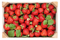 Strawberries berry fruits in wooden box Royalty Free Stock Photography