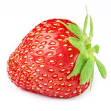Strawberries berry isolated Royalty Free Stock Photo