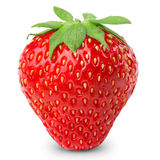 Strawberries berry isolated Royalty Free Stock Image