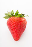 Strawberries berry isolated Stock Images