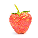 Strawberries berry isolated Stock Image