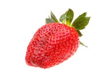 Strawberries berry isolated on white background Stock Photos