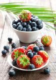 Strawberries and bilberries Stock Photo