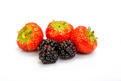 Strawberries and blackberries stock photos