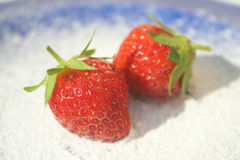 Strawberries on a blue plate. Two ripe red strawberries on blue plate and powdered sugar under them royalty free stock images