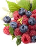 Strawberries, blueberries Stock Image