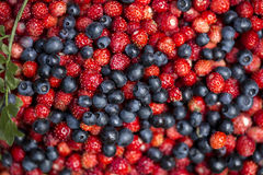 Strawberries and blueberries. Strawberries and blackberries close-up royalty free stock images
