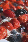 Strawberries, blueberries, blackberries and raspberries on cream, which mades isolated background Stock Photography