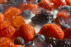 Strawberries, blueberries, blackberries and raspberries on cream, which mades isolated background Royalty Free Stock Image