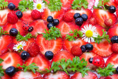Strawberries, blueberries and camomile flowers Royalty Free Stock Photography