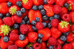 Strawberries  Blueberries & Raspberries Stock Photography
