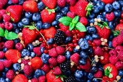 Strawberries, blueberries, raspberries and black berries. fresh berries on white background.  Stock Photography
