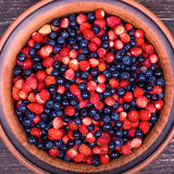 Strawberries and blueberries, wild berry Stock Image